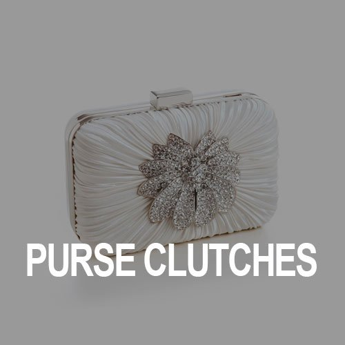 Purse / Clutches