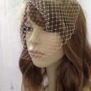 Ivory Lace Birdcage Veil