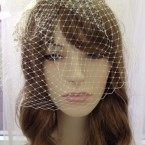 Ivory Birdcage Veil with Lace